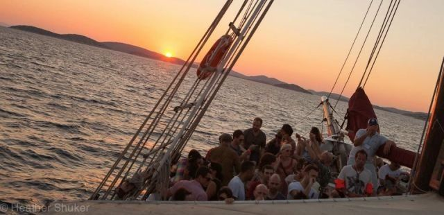 Electric Elephant boat parties - now on sale!