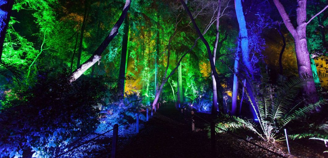 Restricted Forest 2017 welcomes top DJs to Blackburn