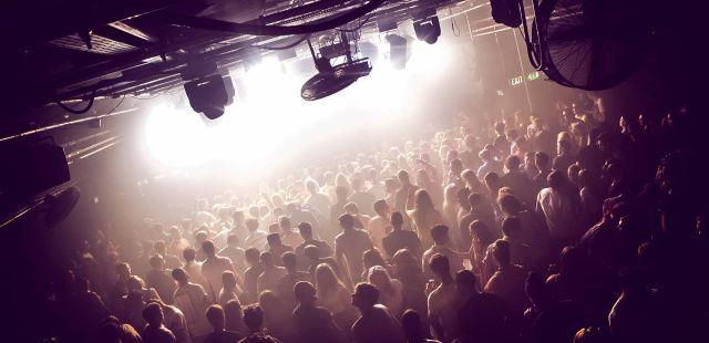 Club Focus: Gorilla in November