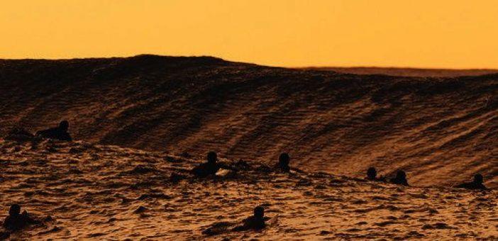 Hervé 'Hallucinated Surf' Review